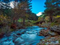 Camino Soria (desde Logroño)
